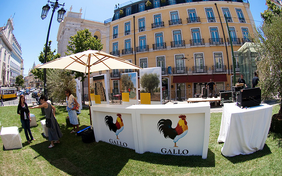 gallo-no-chiado
